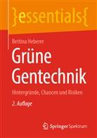 Bettina Heberer - Grüne Gentechnik
