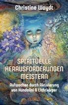 Christine Woydt - SPIRITUELLE HERAUSFORDERUNGEN MEISTERN