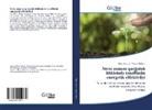 Vilay¿t Abdiyev, Nigar Aliyeva - Stres zamani qargidali bitkisind¿ t¿n¿ffüsün energetik effektivliyi
