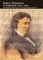 Bernhard R. Appel, Akio Mayeda, Klaus W. Niemöller - Schumann-Forschungen - 11: Robert Schumann in Endenich (1854-1856)
