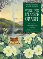 Phili Carr-Gomm, Philip Carr-Gomm, Stephanie Carr-Gomm, Will Worthington - Das keltische Pflanzenorakel, m. Orakelkarten