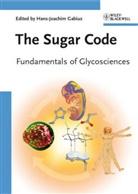 Hans-Joachi Gabius, Hans-Joachim Gabius - The Sugar Code
