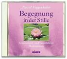 Pascal Voggenhuber, Pascal Voggenhuber - Begegnung in der Stille, Audio-CD (Hörbuch)
