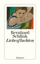 Bernhard Schlink - Liebesfluchten