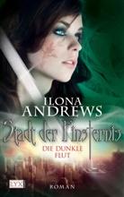 Ilona Andrews - Stadt der Finsternis, Die dunkle Flut