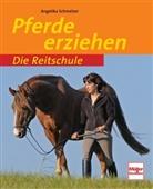 Angelika Schmelzer - Pferde erziehen