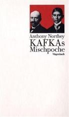 Anthony Northey, Ulric Raulff, Ulrich Raulff - Kafkas Mischpoche