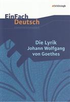 Jürgen Möller, Johann Wolfgang von Goethe - Die Lyrik Johann Wolfgang von Goethes
