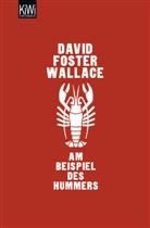 David Foster Wallace, David Foster Wallace, Marcus Ingendaay - Am Beispiel des Hummers