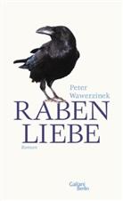 Peter Wawerzinek - Rabenliebe
