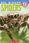 Nic Bishop - Spiders