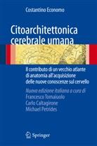 Costantino Economo, Carl Caltagirone, Carlo Caltagirone, Michael Petrides, Francesco Tomaiuolo - Citoarchitettonica cerebrale umana