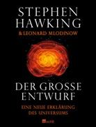 Hawkin, Stephen Hawking, Stephen W. Hawking, Mlodinow, Leonard Mlodinow - Der große Entwurf