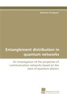 Sébastien Perseguers - Entanglement distribution in quantum networks
