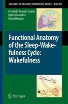Isabel de Andrés, Isabe de Andrés, Isabel de Andrés, Garzón, Miguel Garzón, Fernand Reinoso-Suárez... - Functional Anatomy of the Sleep-Wakefulness Cycle: Wakefulness