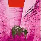 Blonde Redhead - In An Expression Of The Inexpressible (LP)
