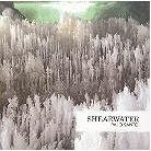 Shearwater - Palo Santo (Expanded Edition, 2 LPs)