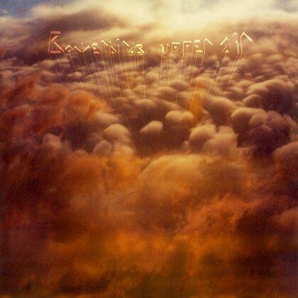 Bowerbirds - Upper Air (LP)