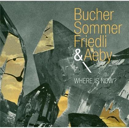 Bucher Sommer Friedli & Aeby - Where Is Now?