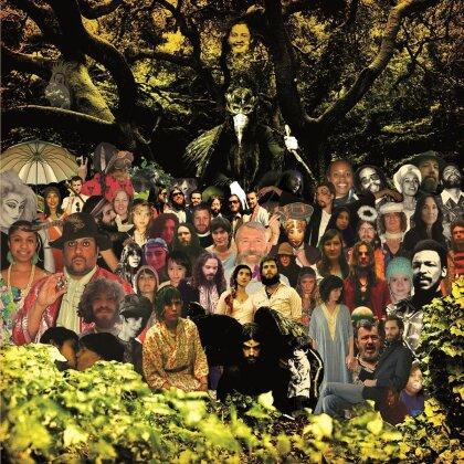 Devendra Banhart - Cripple Crow - Music On Vinyl (2 LPs)