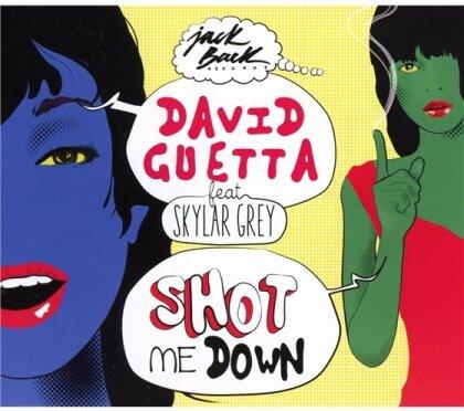 David Guetta & Skylar Grey - Shot Me Down - 2Track