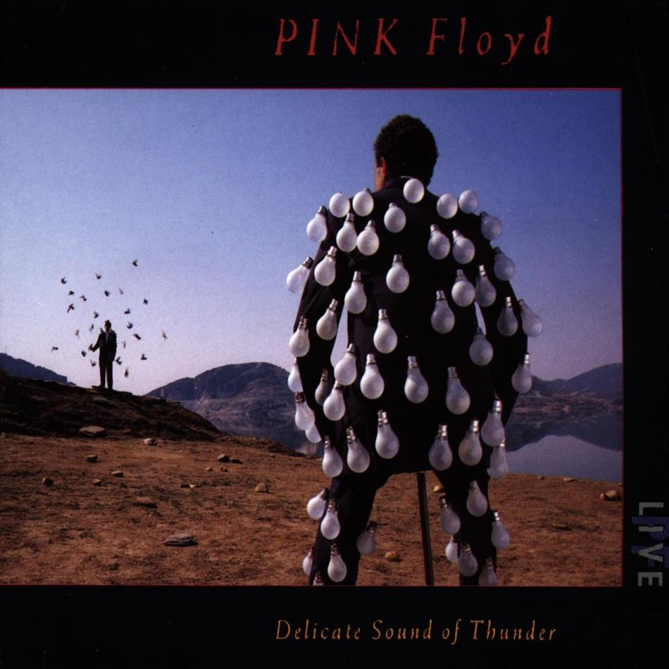 Pink Floyd - Delicate Sound Of Thunder - Live (2 CDs)