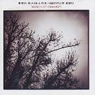 Brian Blade & Fellowship Band - Season Of Changes