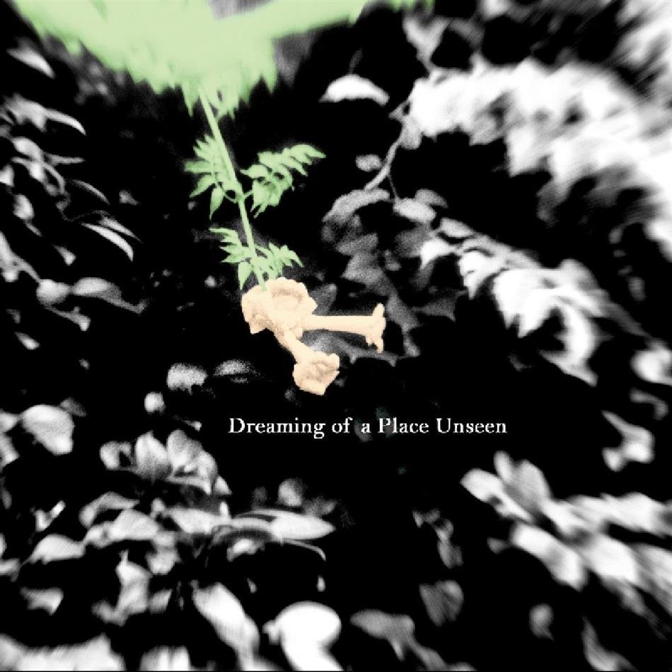 Nolan Quinn - Dreaming Of A Place Unseen