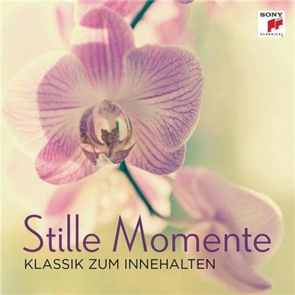 Divers - Stille Momente - Klassik Zum Innehalten
