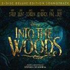 Into The Woods - OST (Deluxe Edition, 2 CDs)