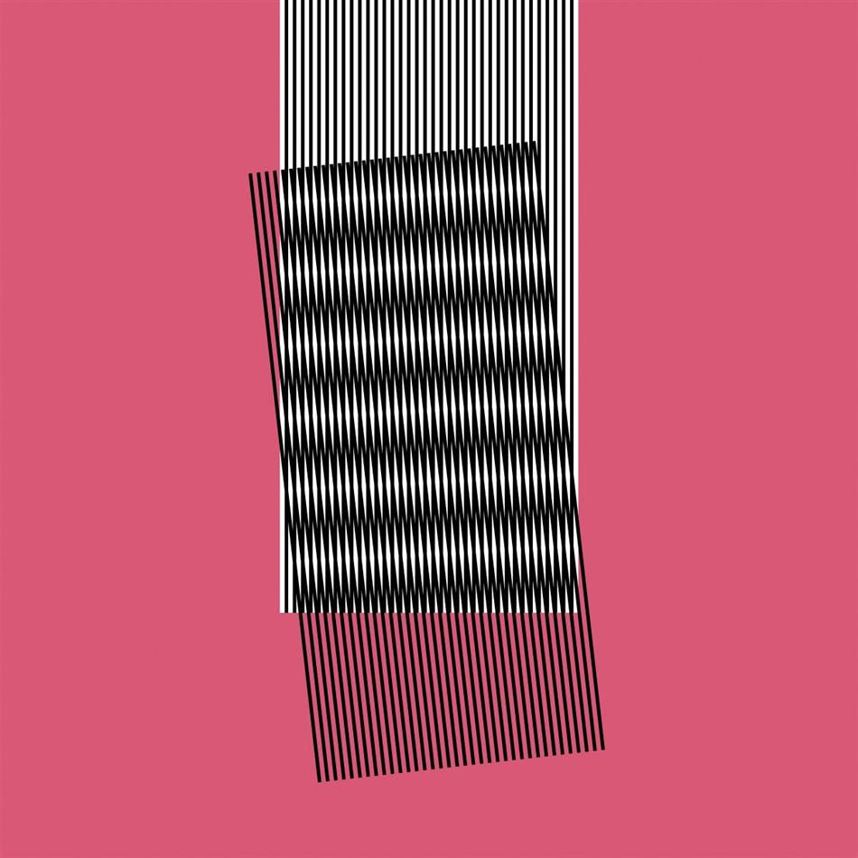 Hot Chip - Why Make Sense? (Deluxe Edition, 2 LPs)