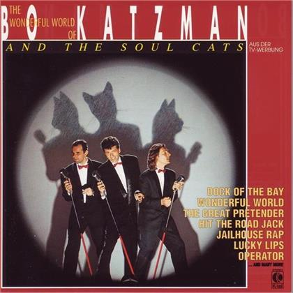 Bo Katzman - And The Soul Cats