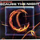 Jan Wayne - Because The Night