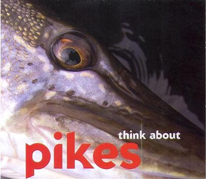 The Pikes - Think About