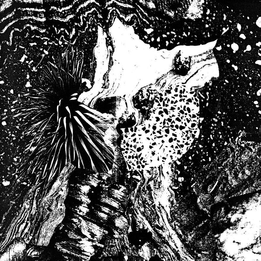 Shriduna - Quasar - Fontastix Vinyl (LP)