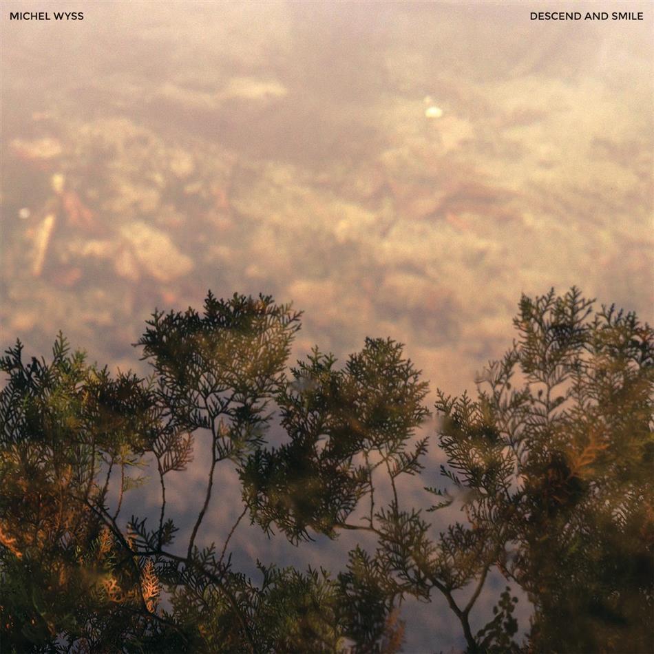 Michel Wyss - Descend And Smile - Fontastix Vinyl (LP)