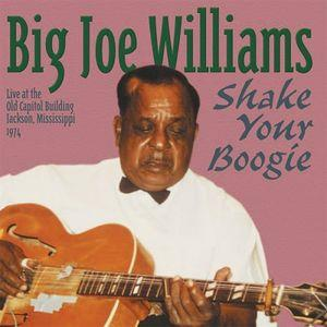 Big Joe Williams - Shake Your Boogie