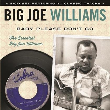 Big Joe Williams - Baby Please Don't Go
