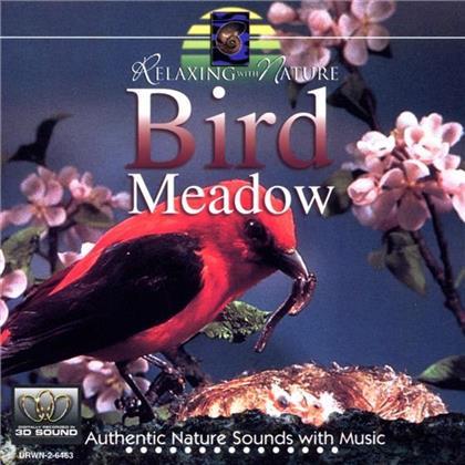 Eric Bernard - Bird Meadow