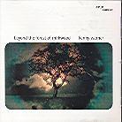 Kenny Werner - Beyond The Forest Of Mirkwood