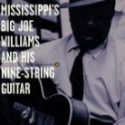 Big Joe Williams - Mississippi's Big Joe Wil