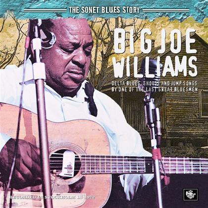 Big Joe Williams - Sonet Blues Story
