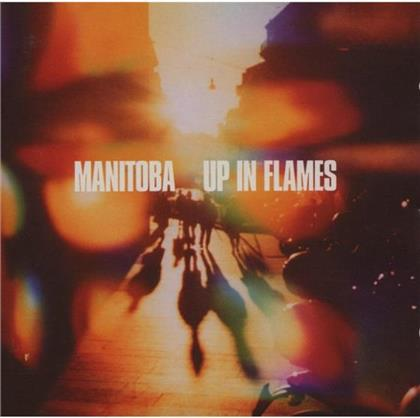 Caribou - Up In Flames (2 CDs)