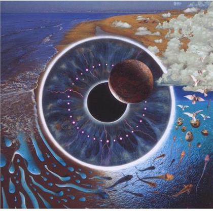 Pink Floyd - Pulse (2 CDs)
