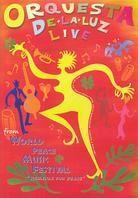 Orquesta De La Luz - Live