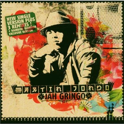 Martin Jondo - Jah Gringo