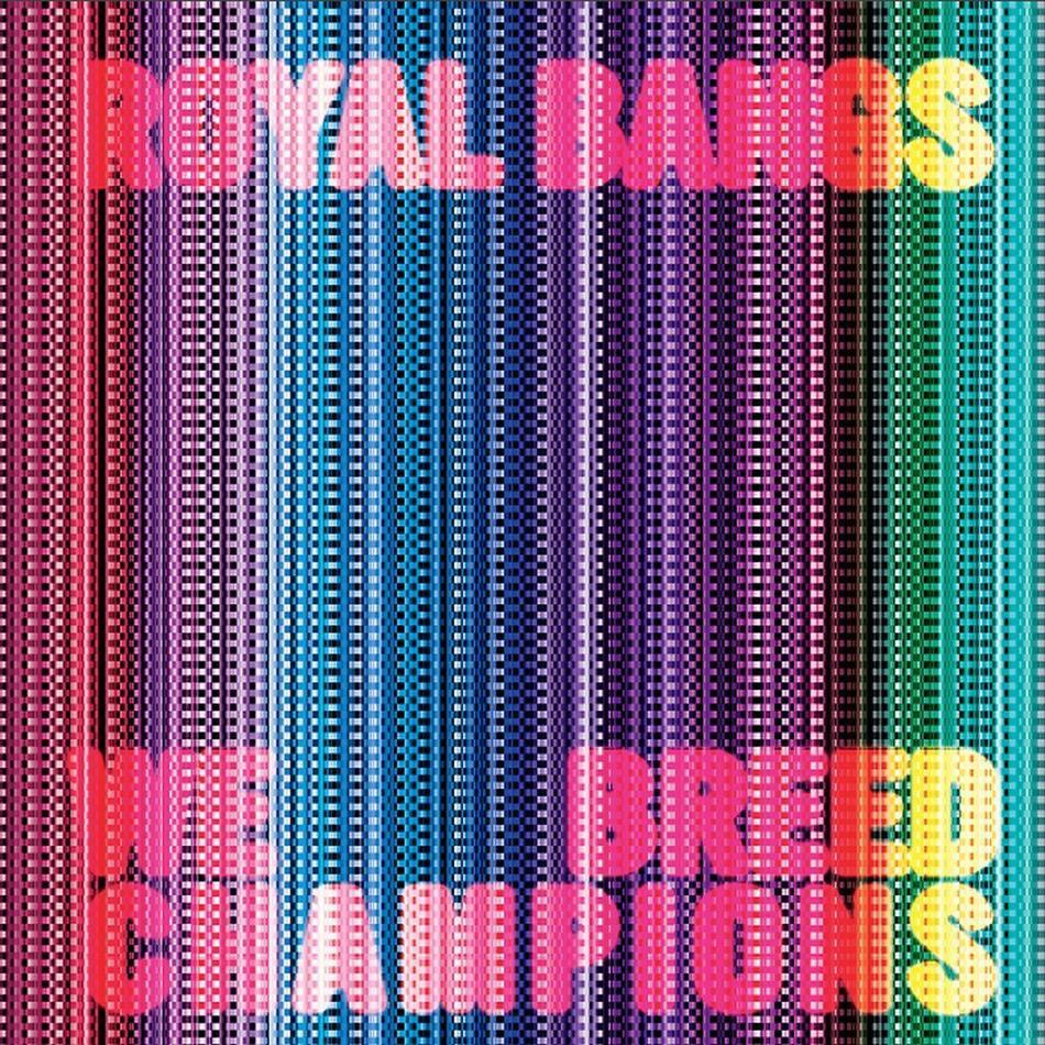 Royal Bangs - We Breed Champions