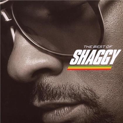 Shaggy - Best Of - Reggae Essentials