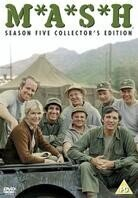 Mash - Season 5 (3 DVDs)