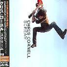 Chris Cornell (Soundgarden/Audioslave) - Scream - + Bonus
